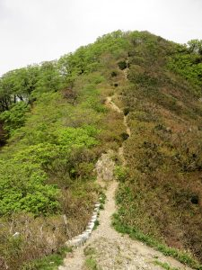 三周ヶ岳登山道